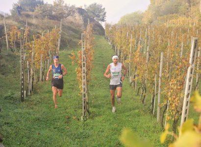 Valtellina Wine Trail, un'edizione illuminata dal sole 6